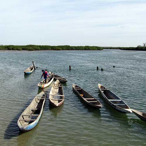 Pirogues sur le delta du Sine Saloum